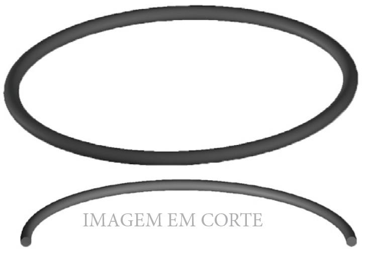 ANEL DE VEDAÇÃO DA UNIDADE FINAL DO GARRAFÃO ANTIGO - COD.01276 Image